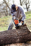 Young man cutting trees using an electrical chainsaw Royalty Free Stock Photography