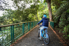 Young man cycling in the forest trail in cold weather during weekend Stock Photography