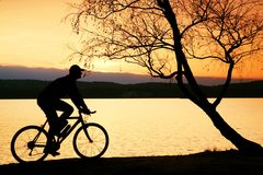 Young man cyclist silhouette on pink orange sky and sunset background on the beach. Stock Photos