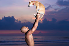 Young man and dog. Young man playing with dog on beach in Bali Stock Photos