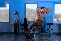 Young Man Doing Back Exercises In The Gym Stock Image