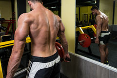 Young Man Doing Back Exercises In The Gym Royalty Free Stock Photography