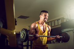 Young man doing barbell exercise in gym Stock Photos
