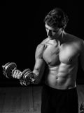 Young man doing bicep curls Royalty Free Stock Image