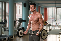 Young Man Doing Exercise For Biceps Stock Image