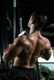 Young Man Doing Heavy Weight Exercise For Back Royalty Free Stock Photo