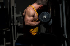 Young man doing heavy weight exercise for biceps Royalty Free Stock Photo