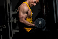 Young man doing heavy weight exercise for biceps Stock Photography