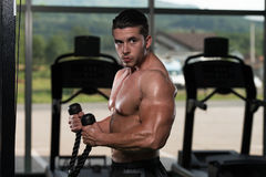 Young Man Doing Heavy Weight Exercise For Biceps Royalty Free Stock Photography