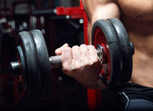 Young man doing heavy weight exercise in gym. Stock Photos