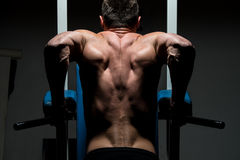 Young man doing heavy weight exercise Stock Photos