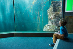 Young man drawing a fish in a tank Stock Image