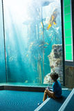 Young man drawing a fish in a tank Stock Images
