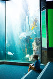 Young man drawing a fish in a tank Royalty Free Stock Photo