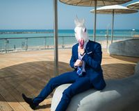 Young man is dressed up a suit under stylish umbrellas on the city waterfront. Unusual traveler in comical mask. Funny unicorn sits at city promenade on Stock Photography