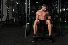 Young Man With Dumbbells Exercising Biceps Royalty Free Stock Image