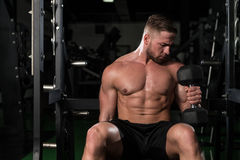 Young Man With Dumbbells Exercising Biceps Royalty Free Stock Photo