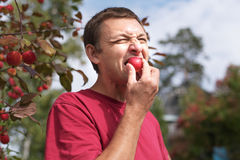 Young man eating a small red apple Stock Photos