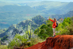Young man enjoying view into Waimea Canyon Stock Photos