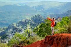 Young man enjoying view into Waimea Canyon. Young man enjoying stunning view into Waimea Canyon, Kauai, Hawaii Stock Photos