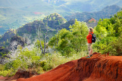 Young man enjoying a view into Waimea Canyon. Young man enjoying stunning view into Waimea Canyon, Kauai, Hawaii Royalty Free Stock Photos