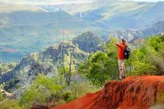 Young man enjoying a view into Waimea Canyon. Young man enjoying stunning view into Waimea Canyon, Kauai, Hawaii Royalty Free Stock Images