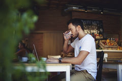 Young man entrepreneur drinking fresh water while working on laptop computer in comfortable cafe, Royalty Free Stock Image