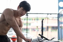Young man execute exercise in fitness center. male athlete choos. E dumbbell in gym. sporty asian guy working out in health club Stock Photos