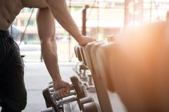 Young man execute exercise in fitness center. male athlete choos. E dumbbell in gym. sporty asian guy working out in health club Stock Image
