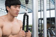 Young man execute exercise with weightlifting machine in fitness Royalty Free Stock Image