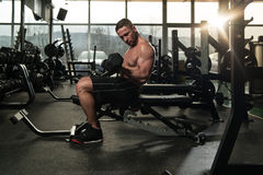 Young Man Exercise Biceps With Dumbbells Stock Image