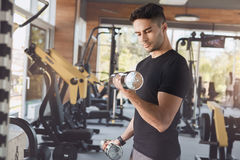 Young man exercise in the gym healthy lifestyle. Young male exercise in the gym with dumbbells Royalty Free Stock Photos
