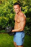 Young man exercisess with dumbells Royalty Free Stock Photos