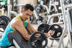 Young man exercising bicep curls with the E-Z barbell. Young handsome man exercising bicep curls with the E-Z barbell while sitting down at preacher curl bench Stock Photos