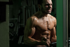 Young Man Exercising Biceps In A Gym Royalty Free Stock Photography