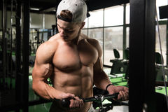 Young Man Exercising Biceps In The Gym. Handsome Muscular Fitness Bodybuilder Doing Heavy Weight Exercise For Biceps On Machine With Cable In The Gym Stock Image