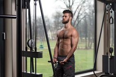 Young Man Exercising Biceps On Machine Stock Images