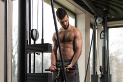 Young Man Exercising Biceps On Machine Stock Photo