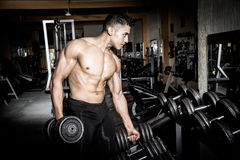 Young man exercising  gym Stock Images
