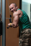 Young Man Exercising Triceps In Healthy Club Stock Photos