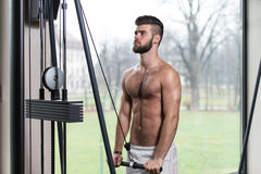 Young Man Exercising Triceps On Machine Royalty Free Stock Photography