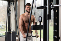 Young Man Exercising Triceps On Machine Stock Photography