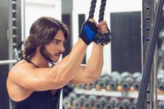 Young man exercising triceps pulldown at the gym. Side view portrait of a determined young man exercising triceps pulldown at cable machine during upper body royalty free stock image