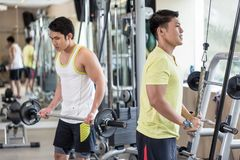 Young man exercising triceps pushdown at the rope cable machine Stock Image