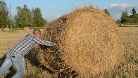 Young man farmer shirt move push straw bales agriculture field stock video