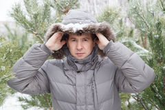 The young man among fir-trees in a hood Stock Image