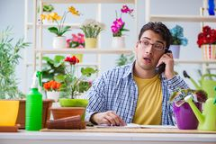 The young man florist working in a flower shop. Young man florist working in a flower shop Royalty Free Stock Photography