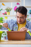 The young man florist working in a flower shop Stock Photography