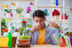 The young man florist working in a flower shop Stock Image