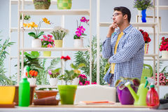 The young man florist working in a flower shop Stock Images
